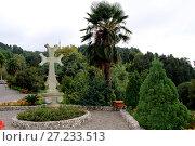 Ботанический сад Сухуми. Стоковое фото, фотограф Гузель Гарипова / Фотобанк Лори