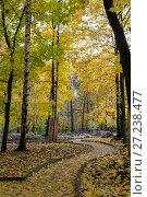 Купить «Эко парк Пехорка», фото № 27238477, снято 13 октября 2017 г. (c) Сергей Паникратов / Фотобанк Лори
