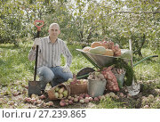 Купить «man with vegetables harvest», фото № 27239865, снято 12 сентября 2012 г. (c) Яков Филимонов / Фотобанк Лори