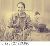Купить «women works at hothouse», фото № 27239893, снято 2 мая 2012 г. (c) Яков Филимонов / Фотобанк Лори