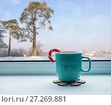 Купить «Winter still life - cup with candy cane on windowsill and winter forest landscape outdoors. Cozy still life with concept of spending winter time indoors», фото № 27269881, снято 28 ноября 2017 г. (c) Зезелина Марина / Фотобанк Лори