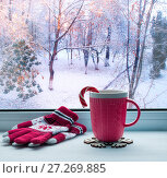 Купить «Winter still life. Cup with candy cane and woolen gloves on windowsill and winter forest outdoors», фото № 27269885, снято 28 ноября 2017 г. (c) Зезелина Марина / Фотобанк Лори