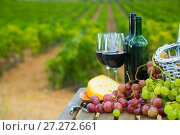 Купить «Red wine with cheese and grapes overlooking vineyard», фото № 27272661, снято 16 декабря 2017 г. (c) Яков Филимонов / Фотобанк Лори