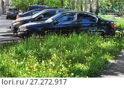 Купить «Автомобильная  парковка  в  городском дворе. Лето.», фото № 27272917, снято 6 июня 2017 г. (c) Татьяна Чепикова / Фотобанк Лори