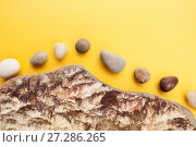 Купить «Minimalistic composition of multi-colored sea pebbles on a bright yellow background.», фото № 27286265, снято 20 апреля 2019 г. (c) Olesya Tseytlin / Фотобанк Лори