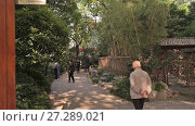 Купить «City park Shanghai», видеоролик № 27289021, снято 9 декабря 2017 г. (c) Балдина Алиса / Фотобанк Лори