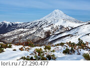 Купить «Вилючинский вулкан, Камчатка», фото № 27290477, снято 22 октября 2017 г. (c) А. А. Пирагис / Фотобанк Лори