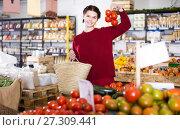 Купить «Woman showing a large twig with tomatoes», фото № 27309441, снято 1 марта 2017 г. (c) Яков Филимонов / Фотобанк Лори