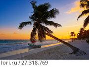 Tulum beach sunset palm tree in Riviera Maya at Mayan Mexico. Стоковое фото, фотограф Tono Balaguer / easy Fotostock / Фотобанк Лори