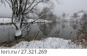 Купить «Заснеженное дерево в воде у реки», видеоролик № 27321269, снято 18 декабря 2017 г. (c) Яна Королёва / Фотобанк Лори