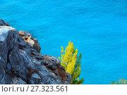 Купить «Summer sea coast (Sithonia, Greece).», фото № 27323561, снято 27 июля 2016 г. (c) Юрий Брыкайло / Фотобанк Лори