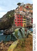 Купить «Summer Manarola, Cinque Terre», фото № 27323761, снято 25 июня 2017 г. (c) Юрий Брыкайло / Фотобанк Лори