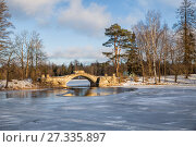 Купить «Picturesque winter landscape Gatchina park with a humpback bridge in a sunny winter day», фото № 27335897, снято 21 января 2017 г. (c) Юлия Бабкина / Фотобанк Лори
