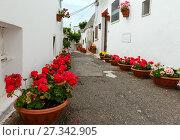 Купить «Trulli houses street in Alberobello, Italy», фото № 27342905, снято 6 июня 2017 г. (c) Юрий Брыкайло / Фотобанк Лори