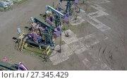 Купить «Группа работающих нефтяных станков качалок», видеоролик № 27345429, снято 13 июня 2017 г. (c) Алексей Кокорин / Фотобанк Лори