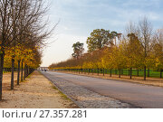 Купить «Autumn trees in Versailles park», фото № 27357281, снято 17 октября 2017 г. (c) Сурикова Ирина / Фотобанк Лори