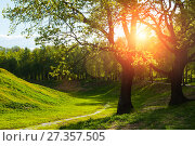 Купить «Spring landscape. Green trees and sunset light shining through the branches. Colorful spring nature», фото № 27357505, снято 26 мая 2017 г. (c) Зезелина Марина / Фотобанк Лори