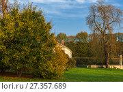 Купить «Autumn leaves and trees in Versailles park», фото № 27357689, снято 17 октября 2017 г. (c) Сурикова Ирина / Фотобанк Лори