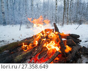 The fire in the winter woods. Стоковое фото, фотограф Алексей Маринченко / Фотобанк Лори