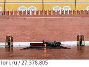 Купить «Город Москва. Вечный огонь у могилы Неизвестного солдата возле кремля», эксклюзивное фото № 27378805, снято 29 ноября 2017 г. (c) Игорь Низов / Фотобанк Лори