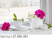 Купить «spring flowers on windowsill», фото № 27380381, снято 25 марта 2017 г. (c) Майя Крученкова / Фотобанк Лори