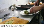 Купить «Chef serves meat on the plate», видеоролик № 27381937, снято 27 июня 2019 г. (c) Константин Шишкин / Фотобанк Лори