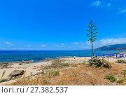 Купить «Tyrrhenian sea beach, Campania, Italy», фото № 27382537, снято 21 июня 2017 г. (c) Юрий Брыкайло / Фотобанк Лори