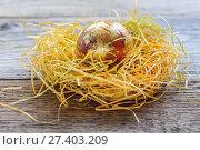 Купить «Nest with golden egg close up», фото № 27403209, снято 5 января 2017 г. (c) Марина Сапрунова / Фотобанк Лори