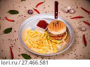 Купить «Hamburger and fried potato», фото № 27466581, снято 18 января 2018 г. (c) Art Konovalov / Фотобанк Лори