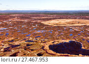 Купить «Северный Урал. Непроходимые болота. Бескрайняя тундра», фото № 27467953, снято 16 июня 2017 г. (c) Евгений Ткачёв / Фотобанк Лори