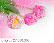 Spring flowers for Valentine day. Стоковое фото, фотограф ElenArt / Фотобанк Лори