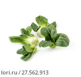 Купить «Inflorescences Chinese cabbage Pak-choi (salad) on a clean white background. Isolated.», фото № 27562913, снято 4 февраля 2018 г. (c) Olesya Tseytlin / Фотобанк Лори