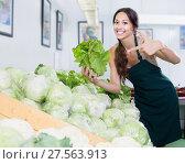 Купить «Glad young female seller picking fresh cabbage head», фото № 27563913, снято 14 ноября 2018 г. (c) Яков Филимонов / Фотобанк Лори