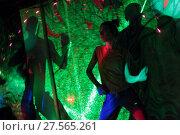 Купить «Танцы с инструктором на свободной площадке свете софитов», эксклюзивное фото № 27565261, снято 4 февраля 2018 г. (c) Дмитрий Неумоин / Фотобанк Лори