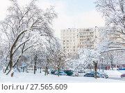 Купить «Последствия сильного снегопада. Заснеженные автомобили, дороги и деревья в Москве», фото № 27565609, снято 6 февраля 2018 г. (c) Алёшина Оксана / Фотобанк Лори