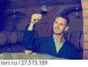 Купить «Young admiring winery worker holding glass of wine in cellar», фото № 27573189, снято 17 октября 2019 г. (c) Яков Филимонов / Фотобанк Лори