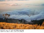Купить «View From Gunung Rinjani», фото № 27579929, снято 23 марта 2019 г. (c) easy Fotostock / Фотобанк Лори