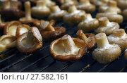 White and shiitake mushrooms on grill. Стоковое фото, фотограф Anton Eine / Фотобанк Лори