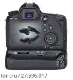 Купить «Digital SLR Camera», фото № 27596017, снято 15 февраля 2019 г. (c) PantherMedia / Фотобанк Лори