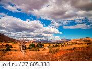 Landscape of Madagascar. Стоковое фото, фотограф Zoonar/Pawel Opaska / easy Fotostock / Фотобанк Лори