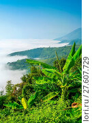 Купить «Ocean Of Mist», фото № 27607729, снято 23 марта 2019 г. (c) easy Fotostock / Фотобанк Лори