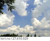 Купить «Blue sky with verdure», фото № 27610029, снято 24 октября 2018 г. (c) PantherMedia / Фотобанк Лори