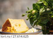 Купить «Selective focus, Chiffon cake on nice dish cutting board», фото № 27614625, снято 22 января 2019 г. (c) PantherMedia / Фотобанк Лори
