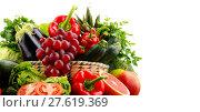 Купить «Composition with variety of fresh vegetables and fruits», фото № 27619369, снято 25 мая 2019 г. (c) PantherMedia / Фотобанк Лори