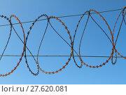 Купить «barbed wire», фото № 27620081, снято 17 октября 2018 г. (c) PantherMedia / Фотобанк Лори