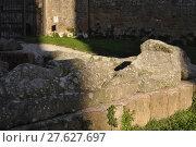 Купить «sarcophagus in the byzantine church of tuscania», фото № 27627697, снято 21 июля 2019 г. (c) PantherMedia / Фотобанк Лори
