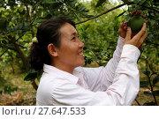 Купить «Tong Samphots received $500 from AMK microfinance client for her farm.», фото № 27647533, снято 23 сентября 2018 г. (c) age Fotostock / Фотобанк Лори