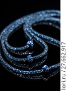 Купить «Necklace with small glass stones», фото № 27662917, снято 15 февраля 2019 г. (c) PantherMedia / Фотобанк Лори