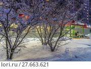 Купить «Зимний городской пейзаж в Митино», эксклюзивное фото № 27663621, снято 5 февраля 2018 г. (c) Виктор Тараканов / Фотобанк Лори