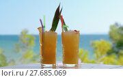 Купить «Ice cube falling into the glass with fruit cocktail», видеоролик № 27685069, снято 22 мая 2019 г. (c) Данил Руденко / Фотобанк Лори